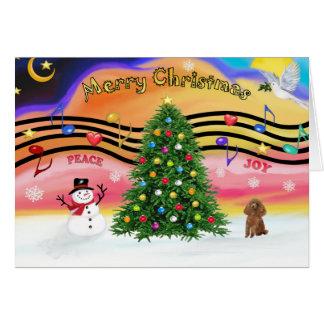Cartão Música 2 do Natal - caniche (brinquedo do abricó)