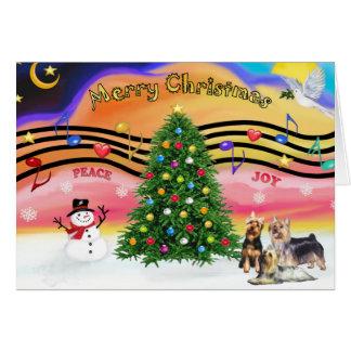 Cartão Música 2 do Natal - terrier de seda (três)
