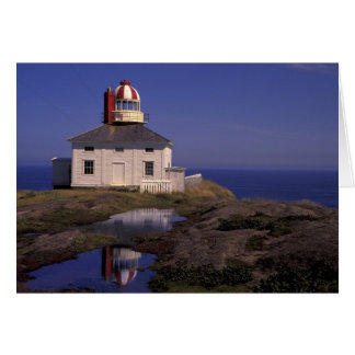 Cartão NA, Canadá, Terra Nova, lança do cabo. Cabo velho