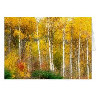 Cartão NA, EUA, Washington, árvores de Aspen da queda