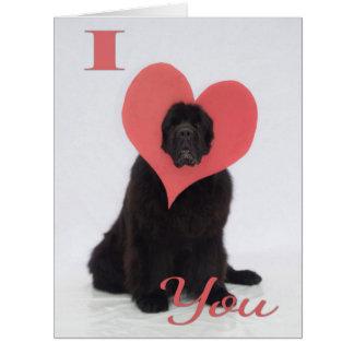Cartão Namorados de Newfie