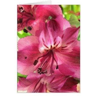 Cartão Namorados do Alstroemeria