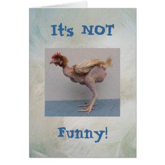 Cartão nao engraçado da galinha