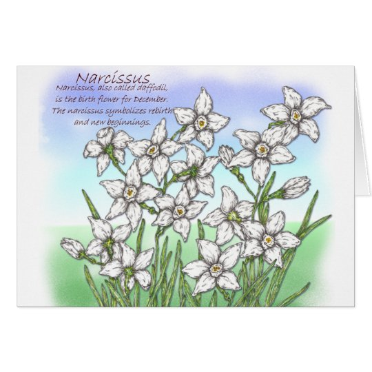 Cartão Narciso