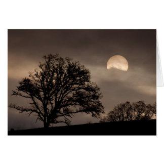 Cartão Nascer do sol do vale de Umpqua