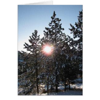 Cartão Nascer do sol nevado em Colorado