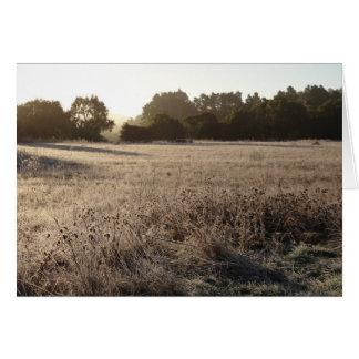 Cartão Nascer do sol no vale Trailhead do urso
