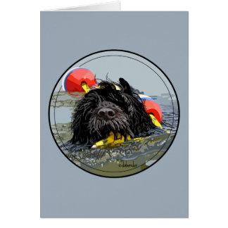Cartão Natação portuguesa do cão de água com linha de