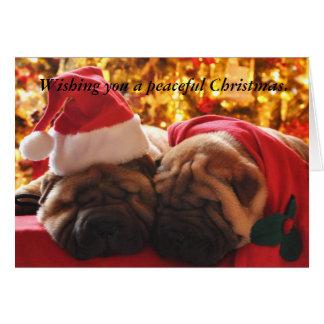 Cartão Natal calmo de Shar Pei