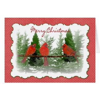 Cartão Natal - cardeais vermelhos empoleirados no ramo