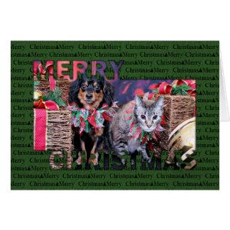 Cartão Natal - Chiweenie - Titus - gatinho