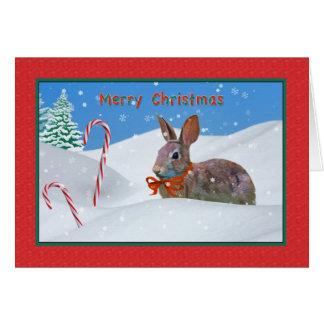 Cartão Natal, coelho, neve, bastões de doces