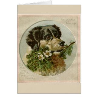Cartão Natal de border collie
