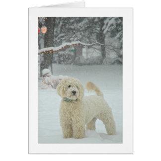 Cartão Natal de Goldendoodle
