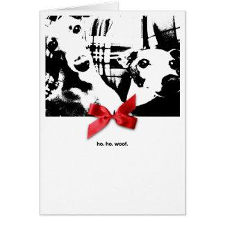 Cartão Natal de Iggy Ho. Ho. Woof.
