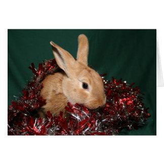 Cartão Natal do coelho