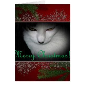 Cartão Natal dos amantes do gatinho!!