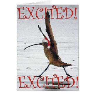 Cartão Natal Excited do maçarico real