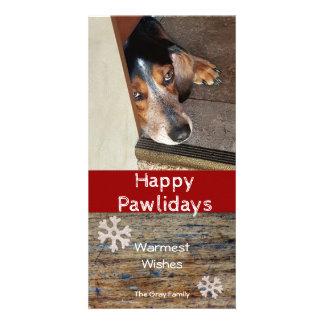 Cartão Natal feliz da foto do animal de estimação de