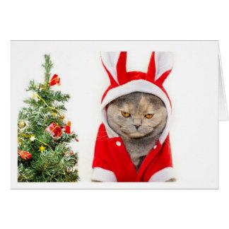 Cartão Natal - gato
