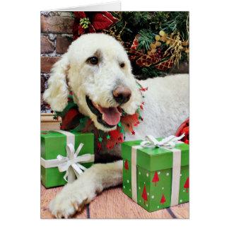 Cartão Natal - LabraDoodle - Davis