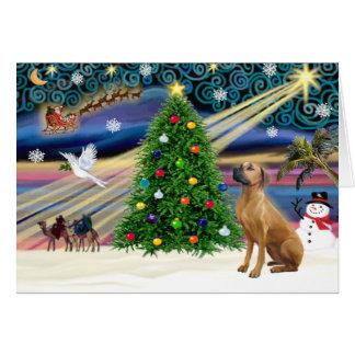 Cartão Natal Rhodesian mágico Ridgeback 1