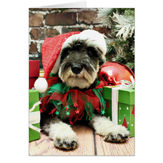 Cartão Natal - Schnauzer - Tom Dooley