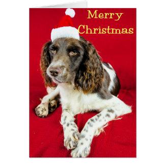 Cartão Natal Springer