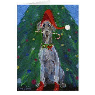 Cartão Natal Weimaraner