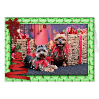 Cartão Natal - yorkshire terrier - Chloe e rochoso