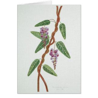Cartão nativo do lilac