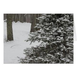 Cartão nevado do feriado do pinho