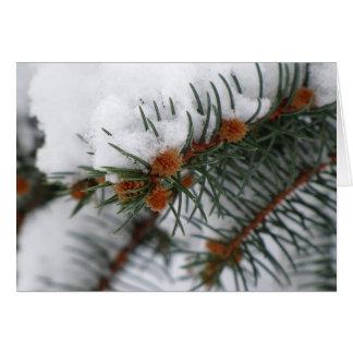 Cartão nevado do pinho do feriado