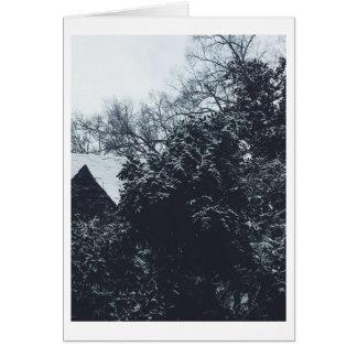 Cartão nevado vazio da vista