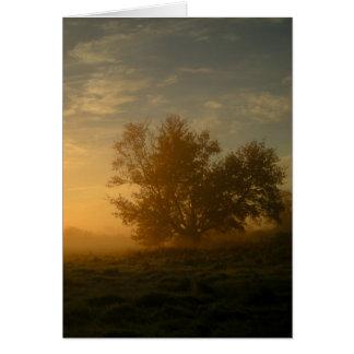 Cartão Névoa do outono