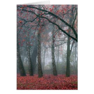 Cartão Névoa na floresta do outono com folhas vermelhas