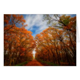 Cartão Noite do outono