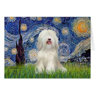 Cartão Noite estrelado - Terrier tibetano branco