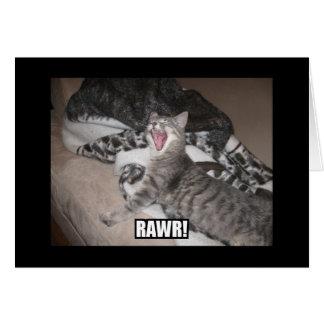 Cartão Nosso gato, Ana que olha assustador!