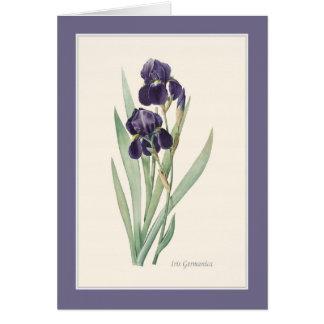 Cartão Nota botânica de Germanica da íris