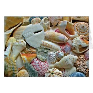 Cartão Nota vazia dos escudos coloridos da praia