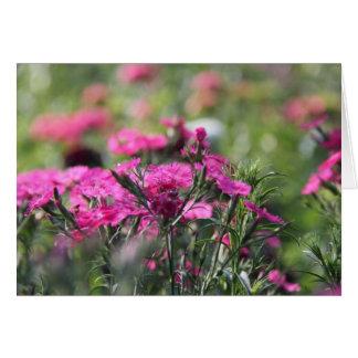 Cartão Notas florais, Wildflowers cor-de-rosa no campo