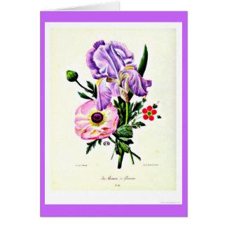 Cartão Notecard-Botanicals-Pierre Joseph Redoute 19