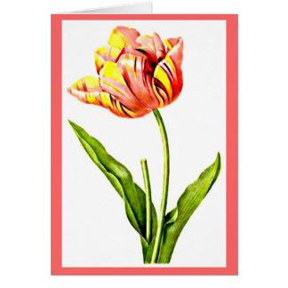 Cartão Notecard-Botanicals-Pierre Joseph Redoute 21