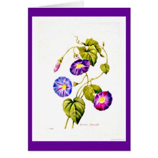 Cartão Notecard-Botanicals-Pierre Joseph Redoute 6