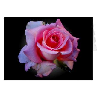 Cartão Notecard do rosa do rosa