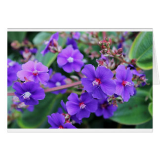 Cartão Notecard florescido bonito