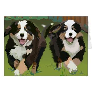 Cartão Notecards dos cães de montanha de Bernese