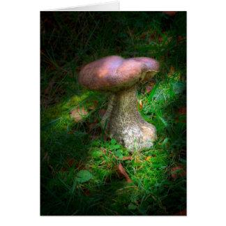 Cartão Notelet/cartão feericamente do vazio do cogumelo
