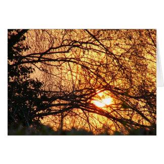 Cartão Notelet do nascer do sol